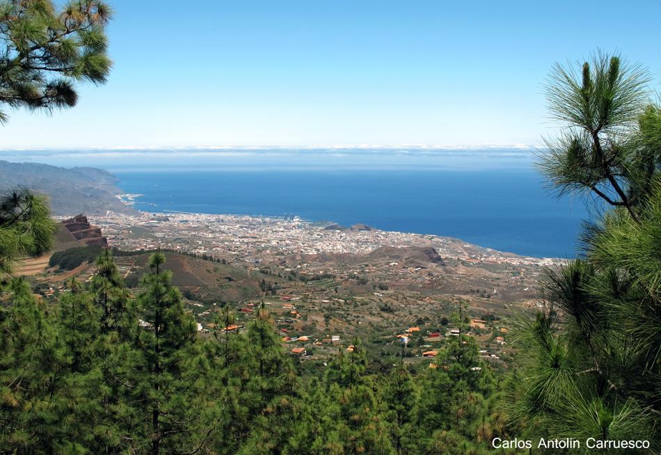 Ruta de la Esperanza - TF24 - Mirador de Ortuño - Tenerife