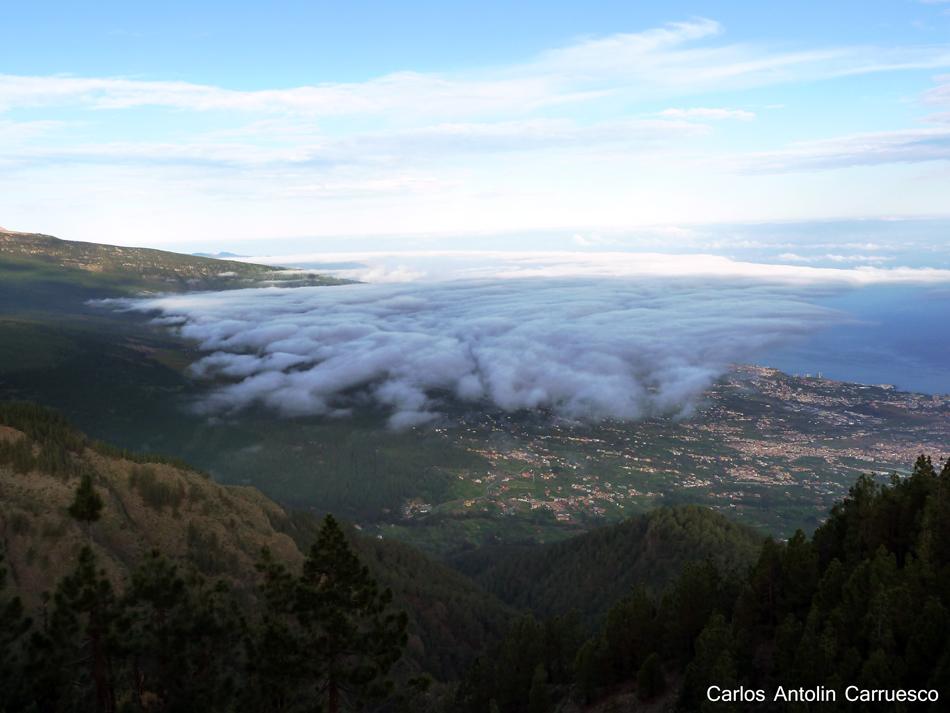 Ruta de la Esperanza - TF24 - Tenerife - la orotava