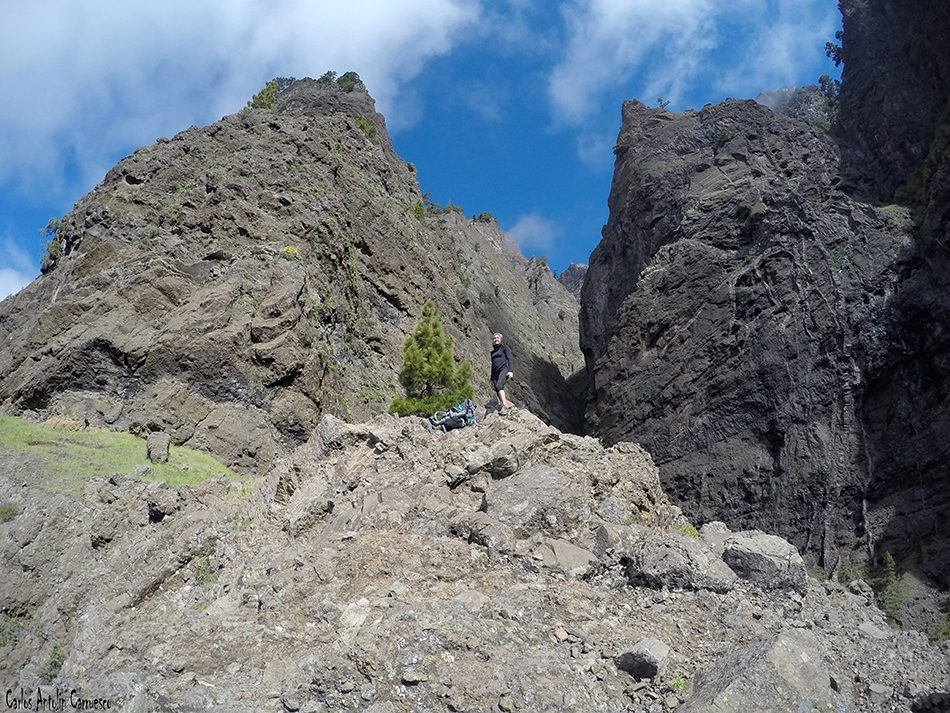 Los nacientes de Hoyo Verde - Taburiente - La Palma