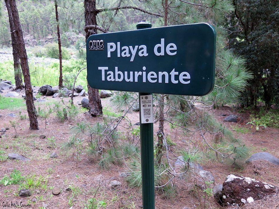 Brecitos - Taburiente - La Palma - playa de taburiente