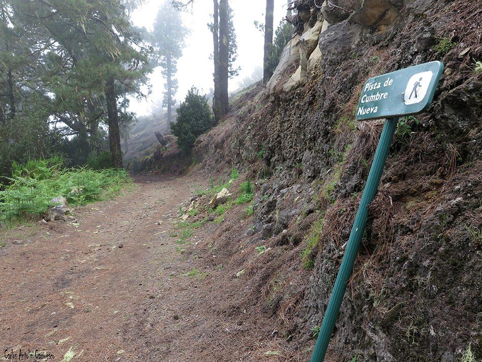 Parque Nacional de La Caldera de Taburiente - La Palma - pista de cumbre nueva