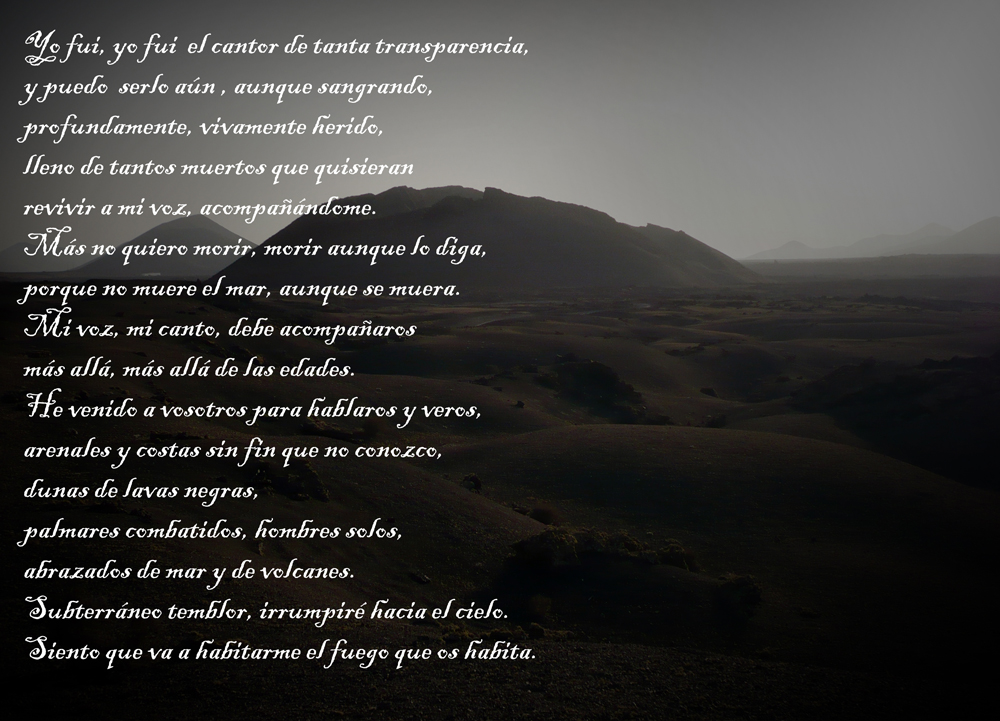 collage poesia 2 web