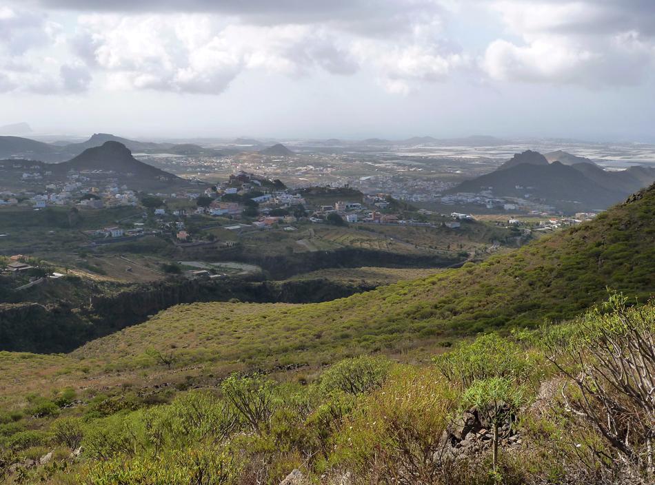 Barranco del Rey - Vento - Arona - Tenerife