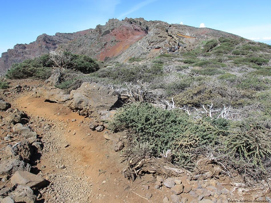 La Crestería - La Palma