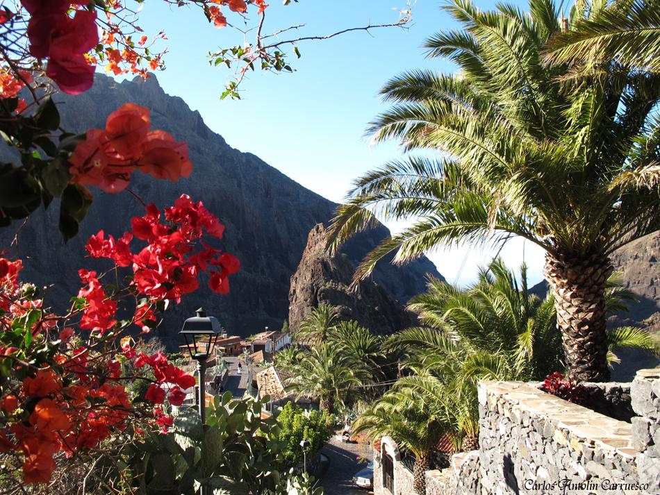 Masca - Teno - Risco de Tarucho - Tenerife