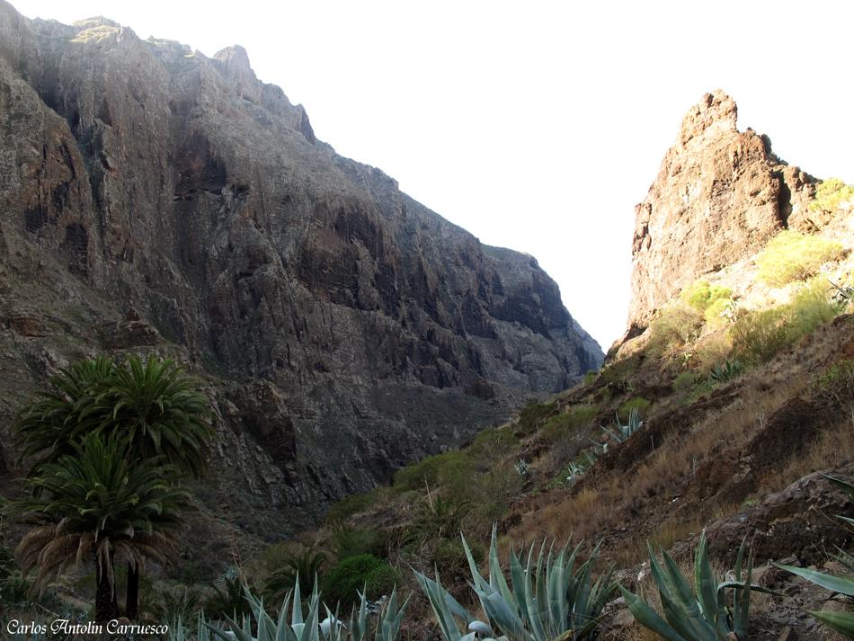 Barranco de Masca - Teno - Tenerife
