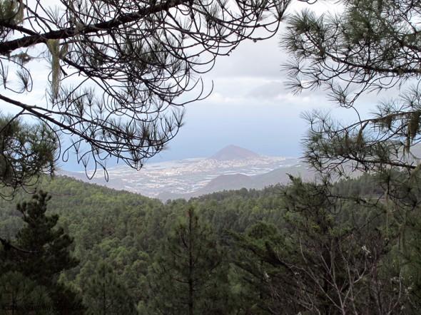 Parque Natural de Tamadaba - Gran Canaria - galdar