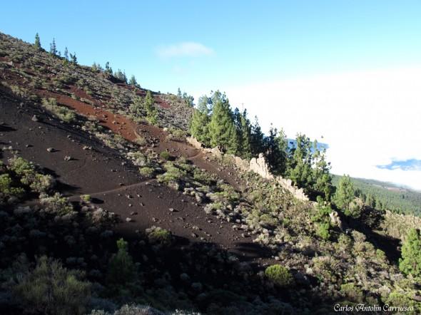 Camino a Candelaria I - Tenerife