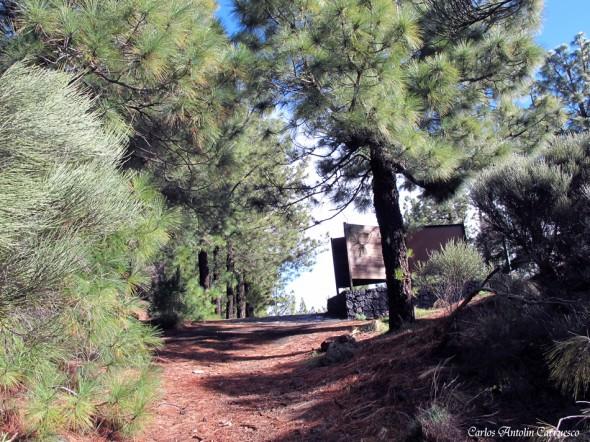 Camino a Candelaria I - Carrterera TF24 - Mirador de La Crucita (1.980 metros) - tenerife