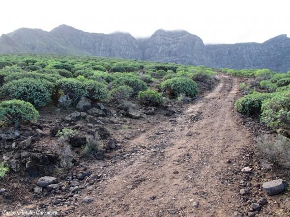 Agaete - Tamadaba - Gran Canaria