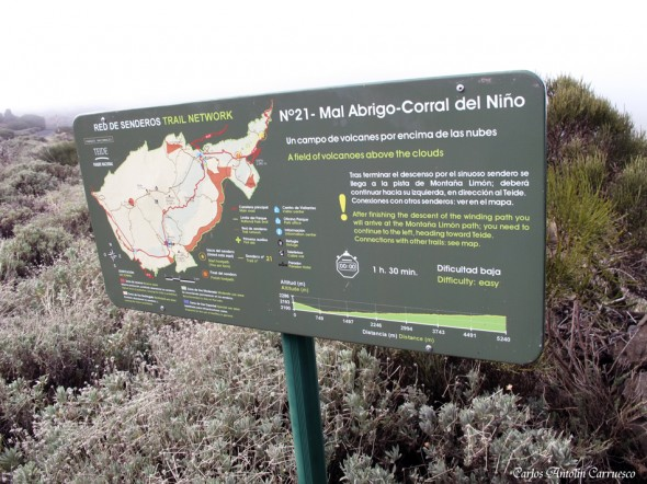 Mal Abrigo - Corral del Niño - Tenerife