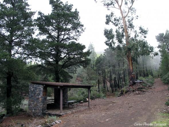 Choza Chimoche - Corona Forestal - Tenerife