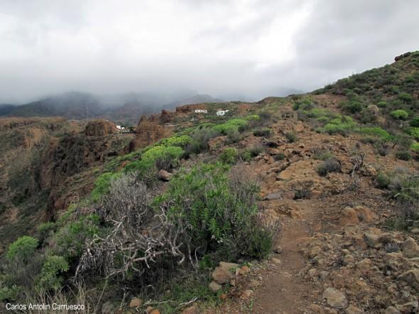 Soria - Chira - Gran Canaria - lomo de la palma