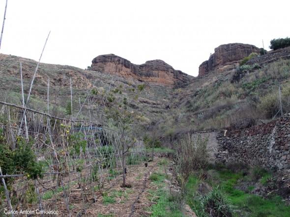 Cercados de Araña - Gran Canaria