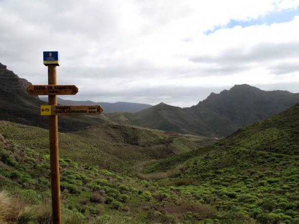 Carretera GC200 - Degollada de Tasarte - Gran Canaria