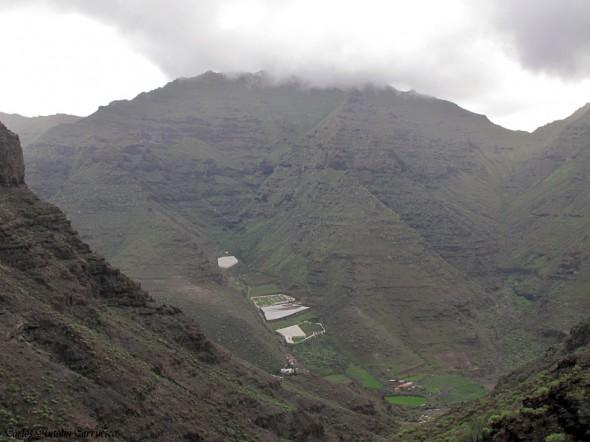 Güi Güi - Guguy - Gran Canaria - tasartico - Degollada de Aguas Sabinas