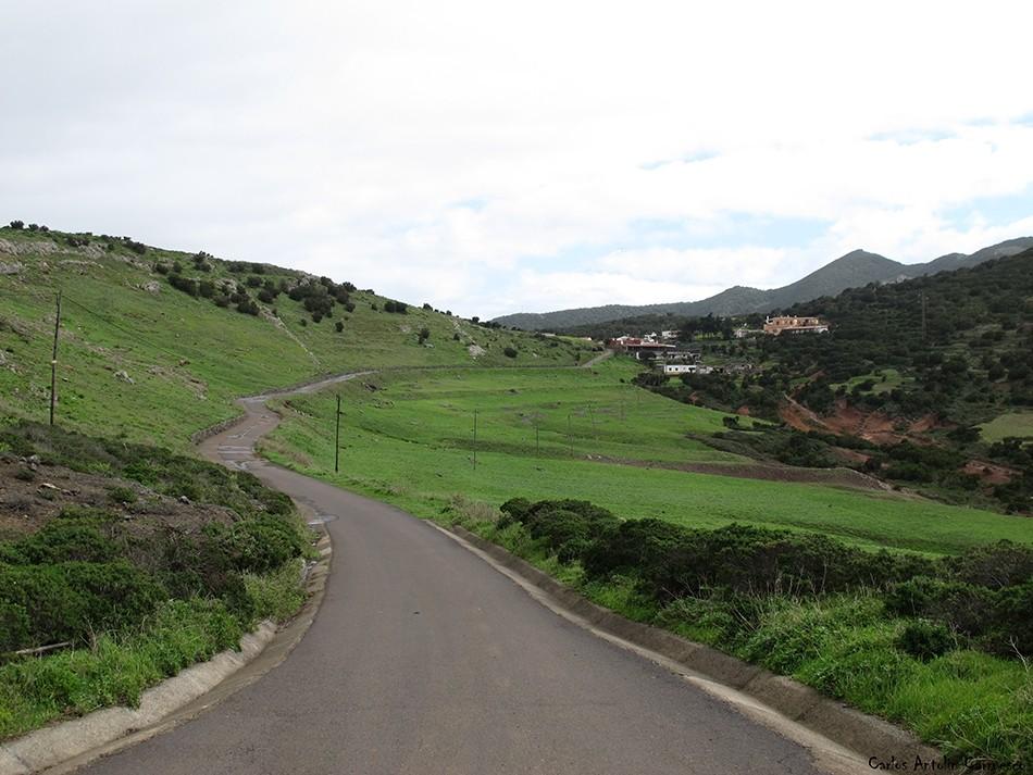 Teno Alto - Los Bailaderos - Tenerife