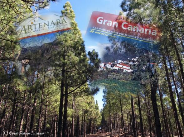isla de Gran Canaria - rutas 2014