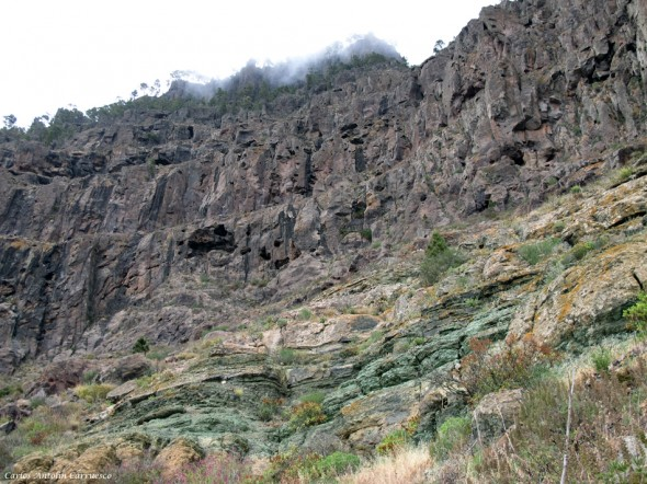 azulejos de Inagua - Gran Canaria