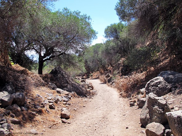 Barranco Los Cernícalos - Gran Canaria