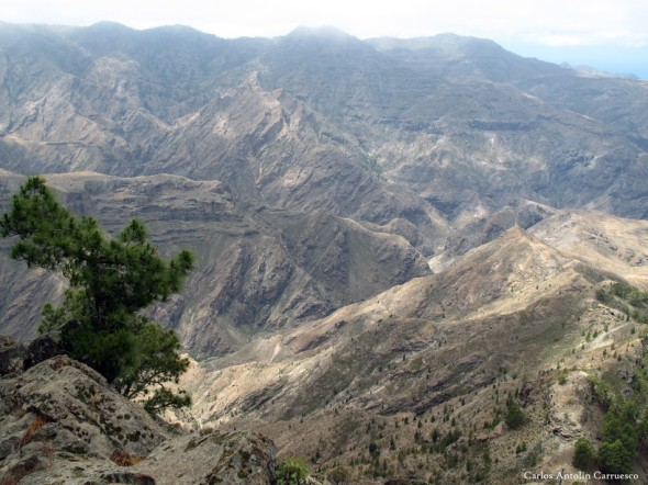 Altavista - La Aldea - Gran Canaria