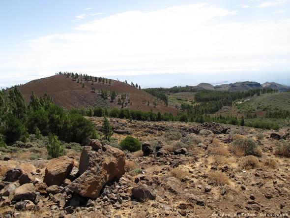 Riscos de Tirajana - Torre forestal - Gran Canaria - la calderilla