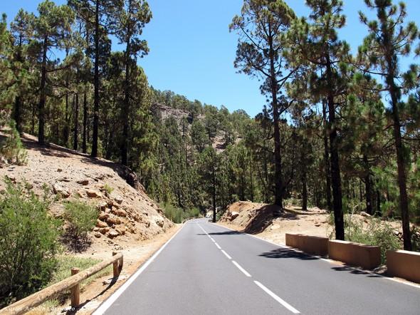 TF21 Cañadas del Teide - Vilaflor<br/>Tenerife
