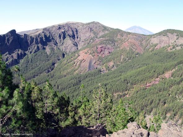 dirección al Barranco de Las Saletas - Caldera de Pedro Gil - Tenerife