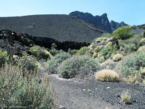 Las Arenas - Caldera de Pedro Gil - Tenerife