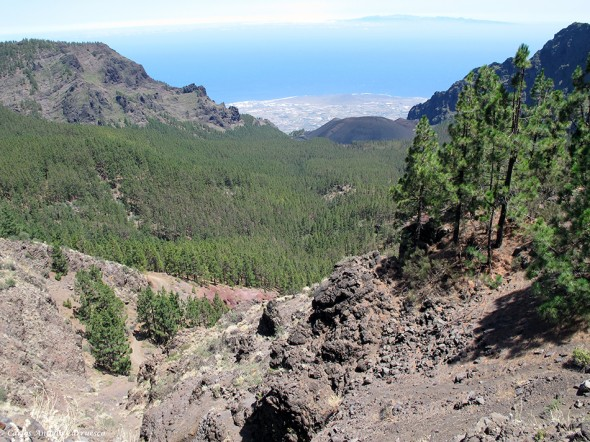 La Crucita - Caldera de Pedro Gil - TF24 - Tenerife