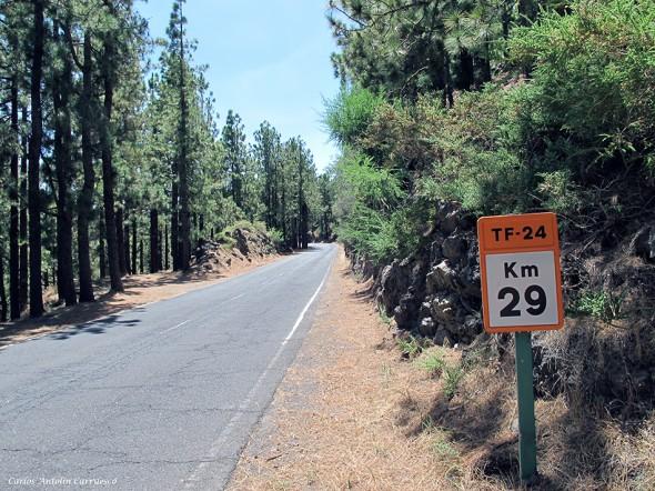 TF24 en dirección al refugio de Ayosa - Tenerife
