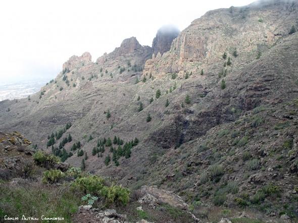 Camino de Suarez - Degollada de los Frailitos - Tenerife