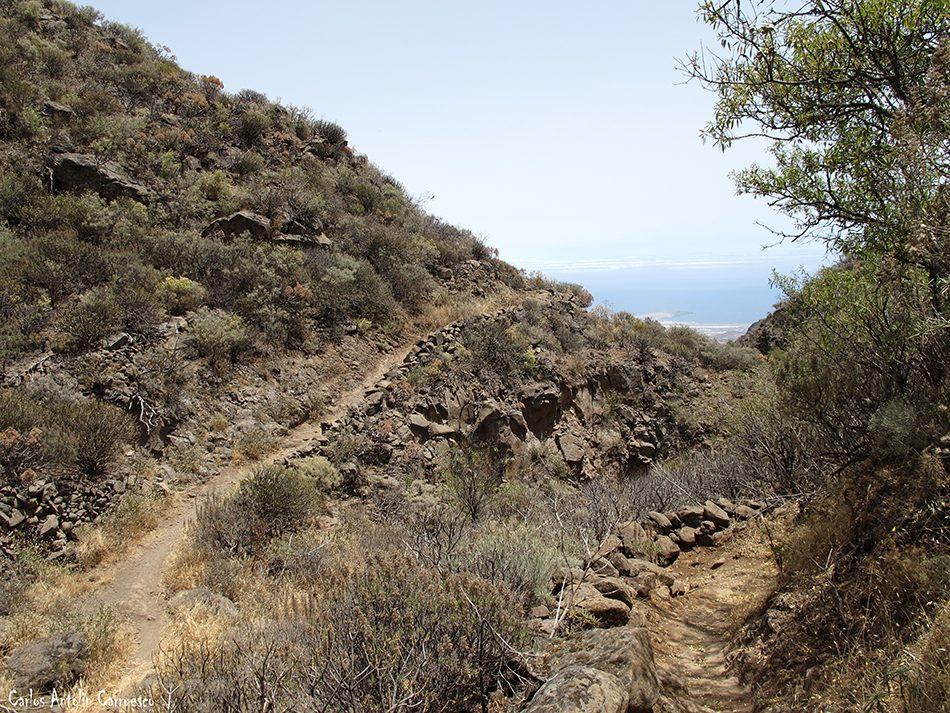Paso Bermejo - Guayadeque - Gran Canaria