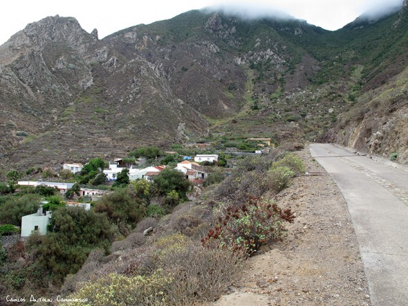 Anaga - pista al Draguillo - Tenerife - el draguillo