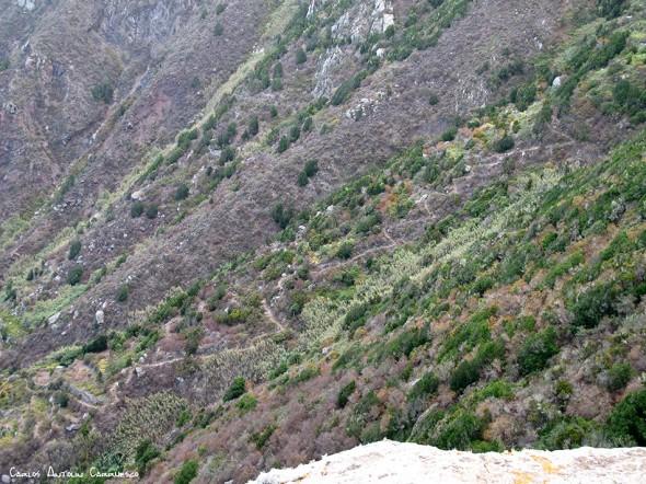 sendero que conecta El Draguillo con Chamorga - Anaga - Tenerife