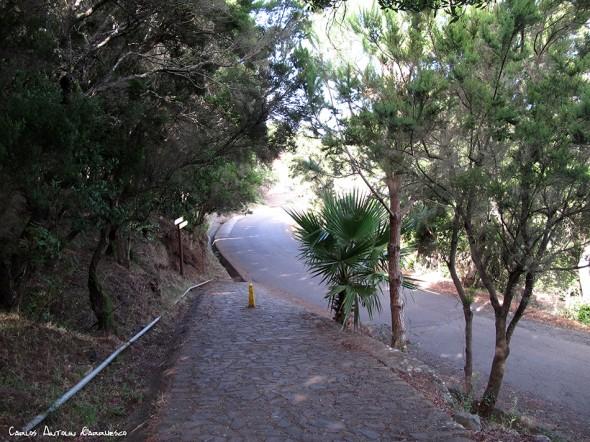 Callejón de Teno - Teno - Tenerife