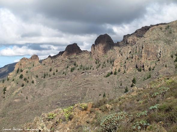 Camino de Suarez - Tenerife - frailitos