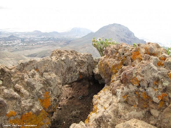 cima del Roque de los Brezos - Ifonche - Tenerife