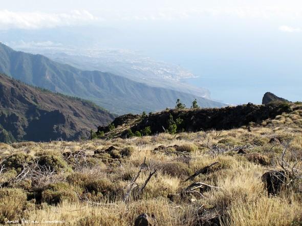 Abandonamos la pista Nº17 y nos adentramos en busca de Cho Marcial - P.N. del Teide - Tenerife