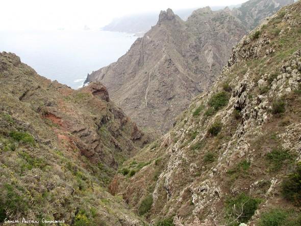 Anaga - Tenerife - roque - marrubial