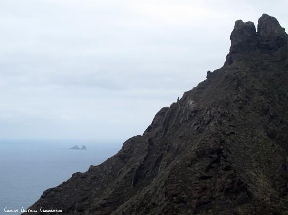 Palo Hincado - Taborno - Tenerife - el marrubial