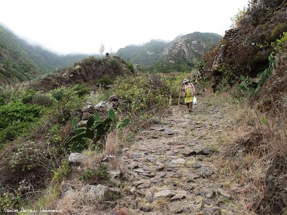 Camino de Las Vueltas - Anaga - Tenerife - taganana