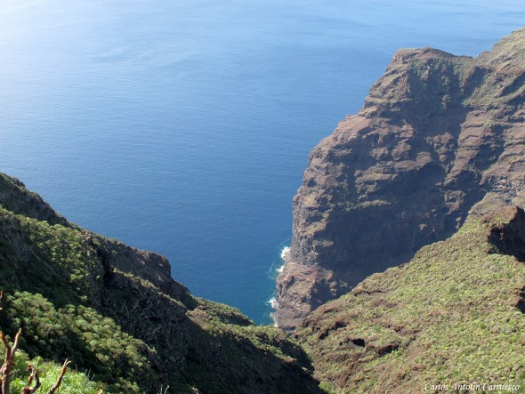 Barranco del Retamar - Teno - Tenerife
