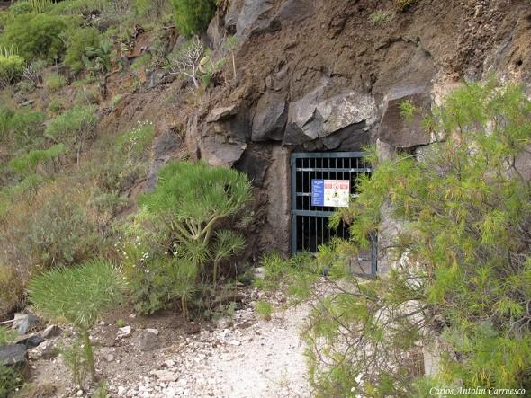 Tunel 1 Boca Norte Canal Galería El Sauce - Tamaimo - Tenerife