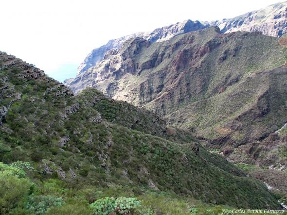 Barranco Seco - Montaña de Guama - Tenerife