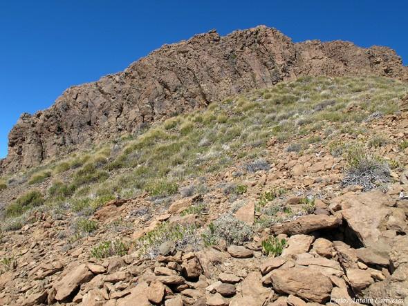 El Sombrero - P.N. del Teide - Tenerife