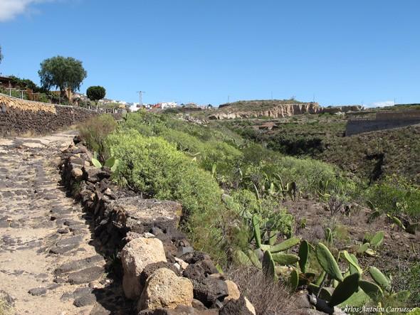 Camino Real del Sur - Tenerife - san miguel de abona