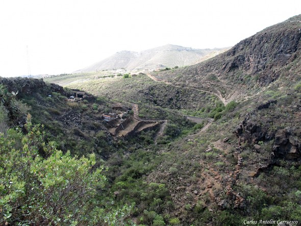 Camino Real del Sur - Barranco de El Drago - Tenerife