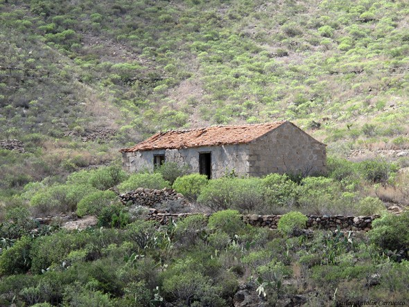 La casa del Gato - Camino Real del Sur - Tenerife