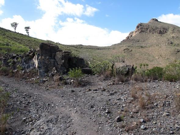 Camino que nos lleva al Mirador de La Centinela - Tenerife